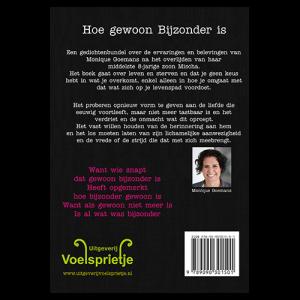 product Hoe gewoon Bijzonder is gedichtenbundel ISBN 9789090301501 omslag