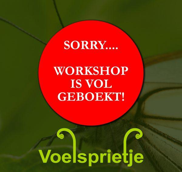 Deze workshop is vol geboekt!