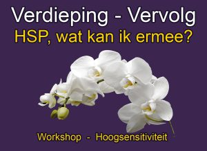 Verdieping Vervolg Workshop hoogsensitiviteit HSP wat kan ik ermee