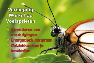 Verdieping Workshop Voelsprieten - energetisch opruimen