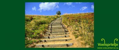 Hoogsensitiviteit als Gave ervaren In je kracht staan Grenzen aangeven