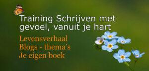 Training schrijven met gevoel vanuit je hart Voelsprietje Veendam Levensverhaal boek blogs