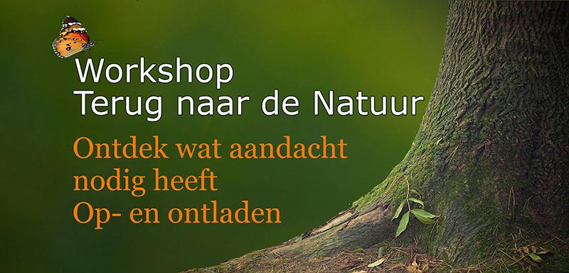 Workshop Terug naar de Natuur Voelsprietje Borger op en ontladen