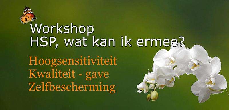 Workshop Hoogsensitiviteit HSP wat kan ik ermee Voelsprietje Veendam