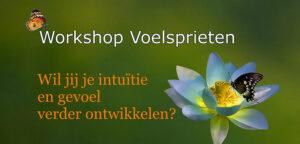 Workshop Voelsprieten Intuïtie Gevoel Energie Reading Voelsprietje Veendam